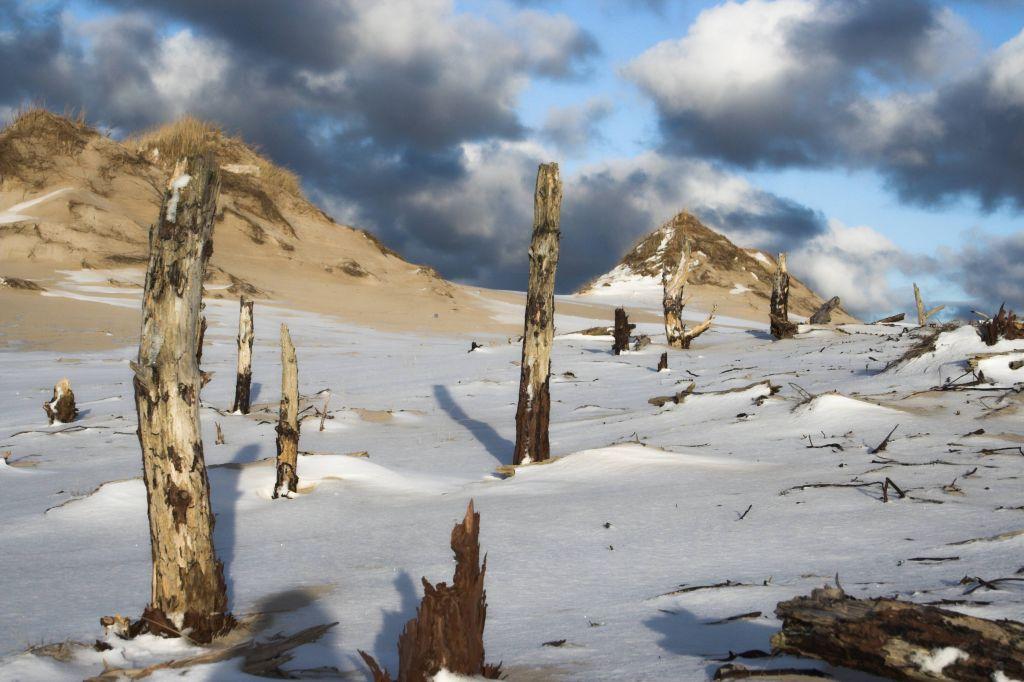 stowinksi park narodwy