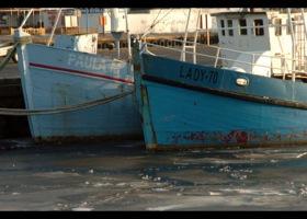 Port w Ustec zimą, fot. SAS