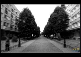fot. Mariusz Surowiec