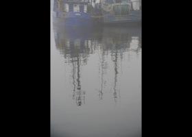 Mgła w usteckim porcie, fot.,SAS