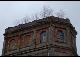 Pałac w Cecenowie, fot.W.Wolski