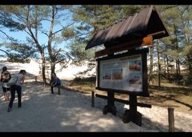 Ruchome wydmy Słowińskiego Parku Narodowego, fot.SAS
